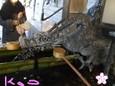 2010成田山・お手洗い場