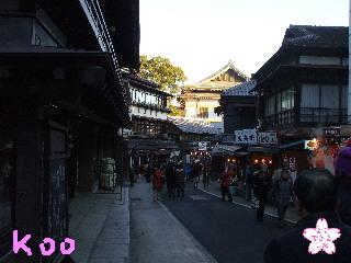 2010成田山・参道